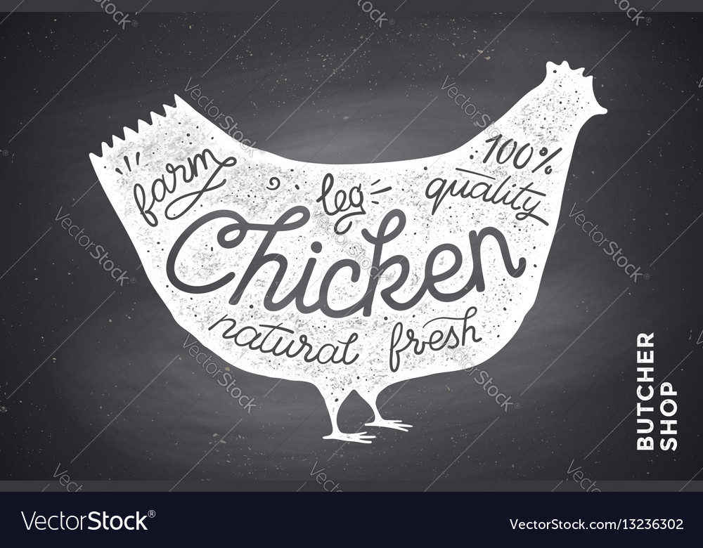 Poster with red chicken silhouette lettering vector image