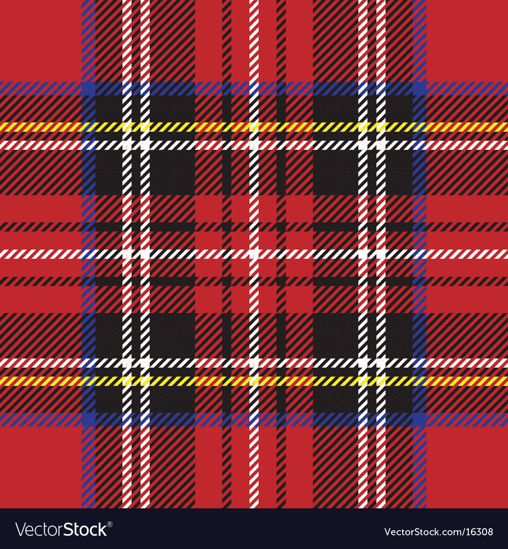 Punk rock plaid vector image