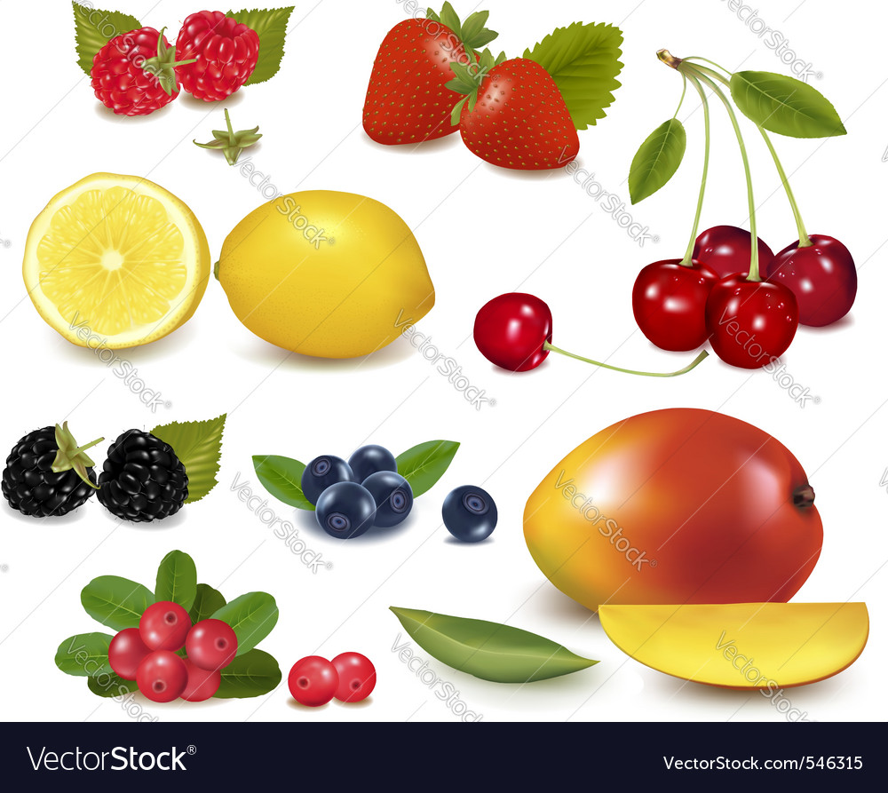 Fresh summer fruit vector image