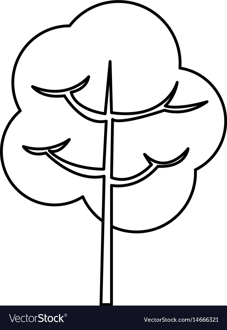Tree branch stem trunk natural line vector image