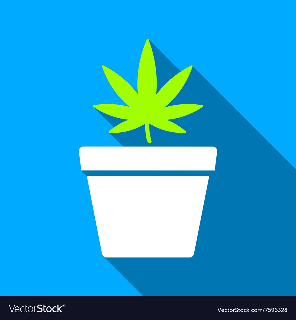 Cannabis Pot Flat Long Shadow Square Icon vector image