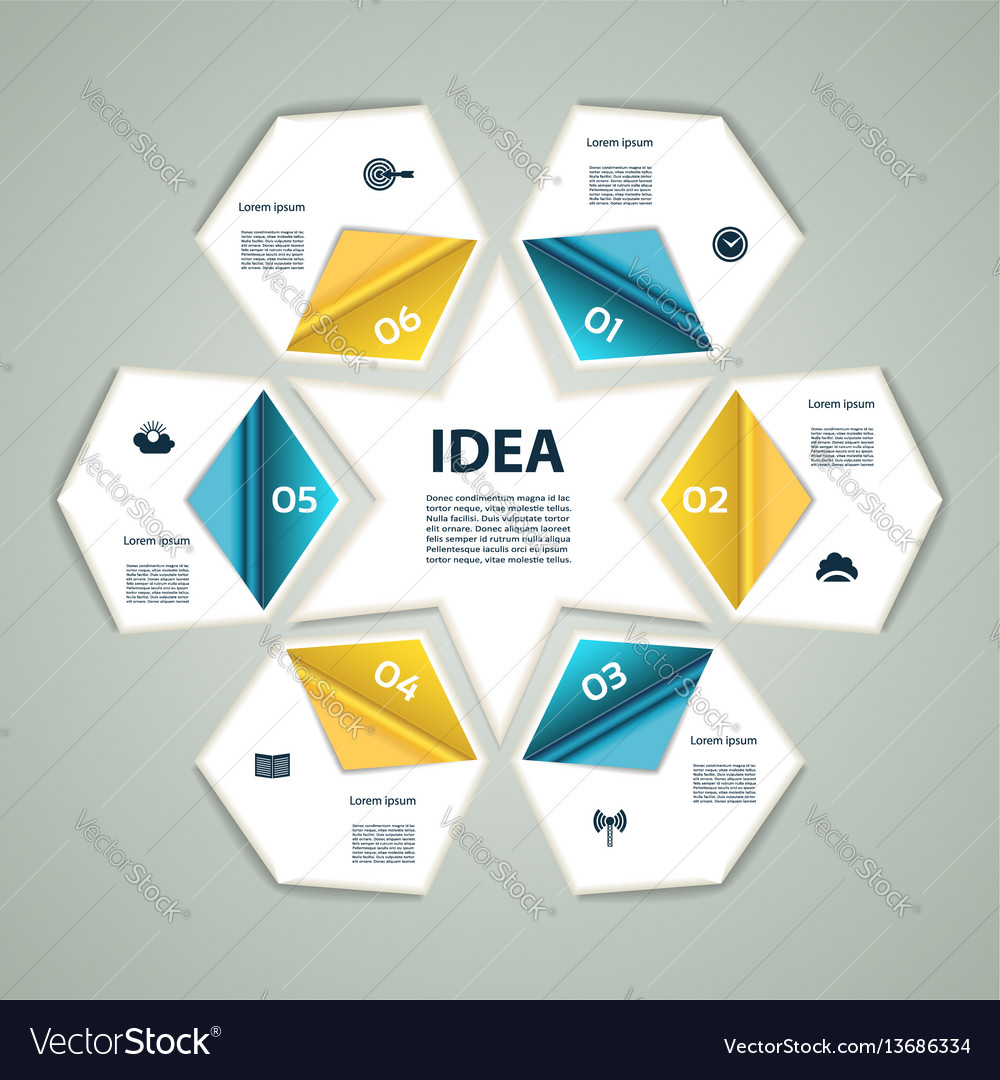 6 step process modern info graphics vector image