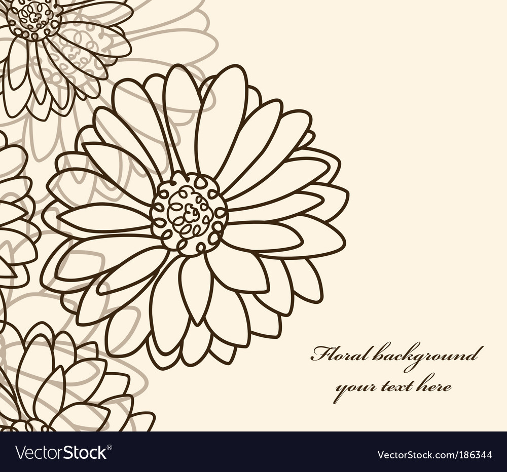 Floral background chamomile vector image