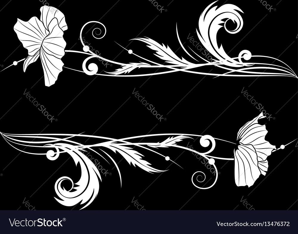 Poppy on black vector image