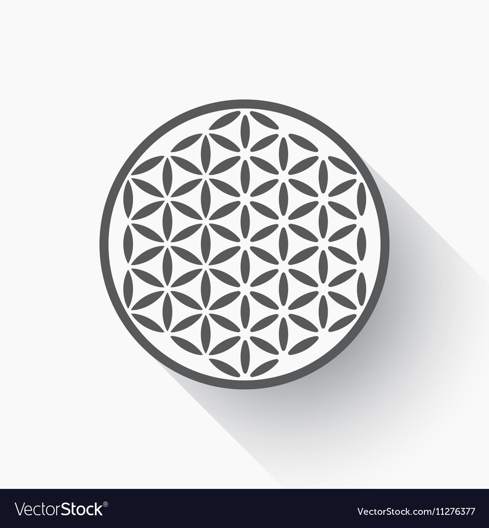Flower of life vector image