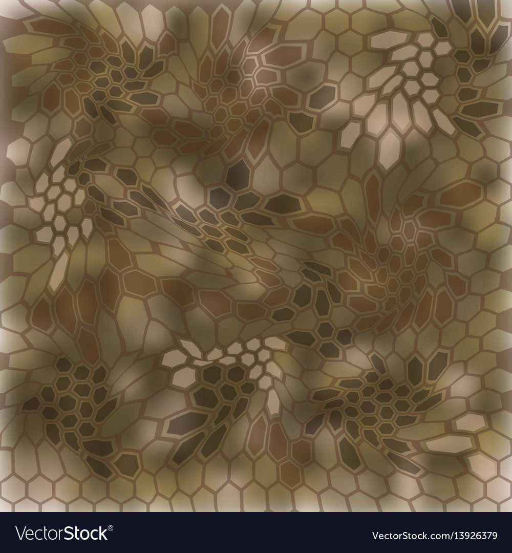 Modern kryptek mandrake camouflage patterns vector image