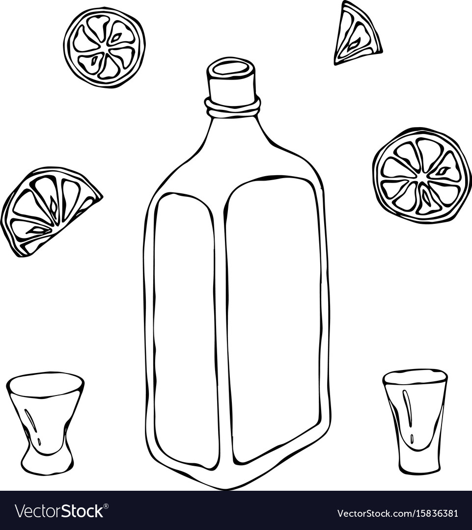 Whiskey cognac or brandy bottle and shot glass vector image