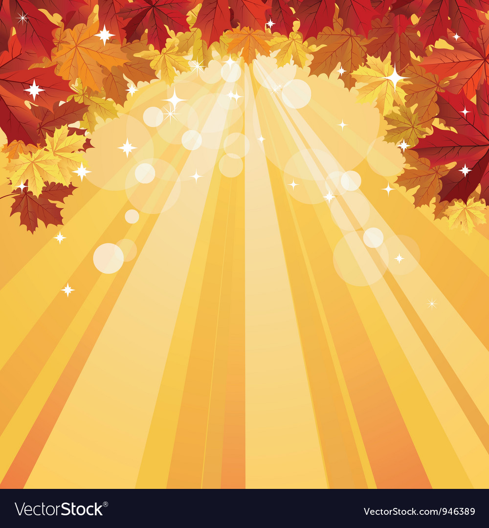 Autumn background with space for text vector image