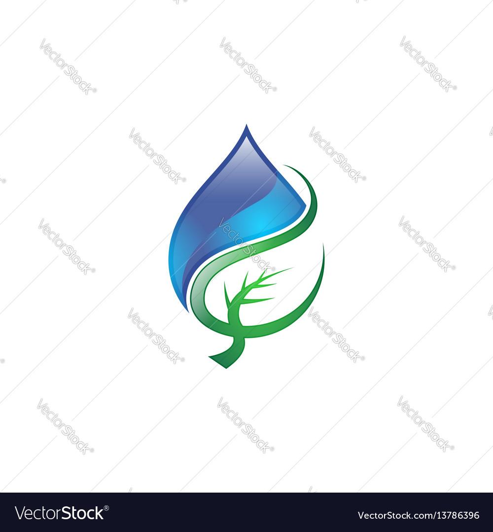 Water drop leaf logo vector image