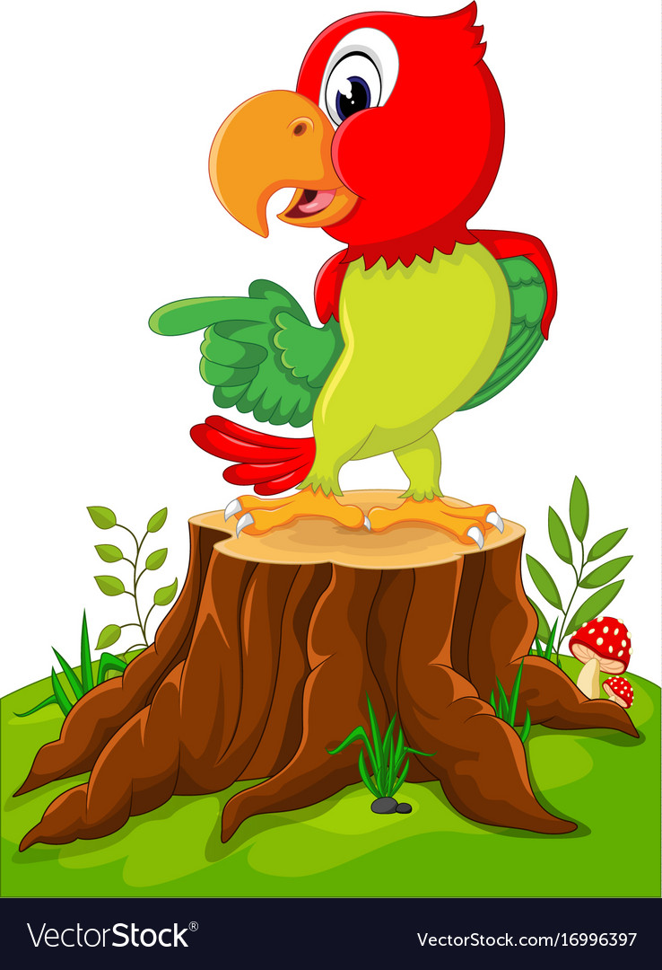 Cartoon cute parrot on tree stump vector image
