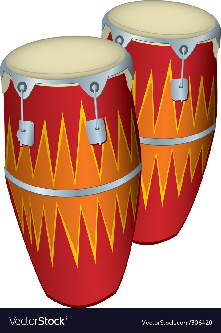 Congas vector image