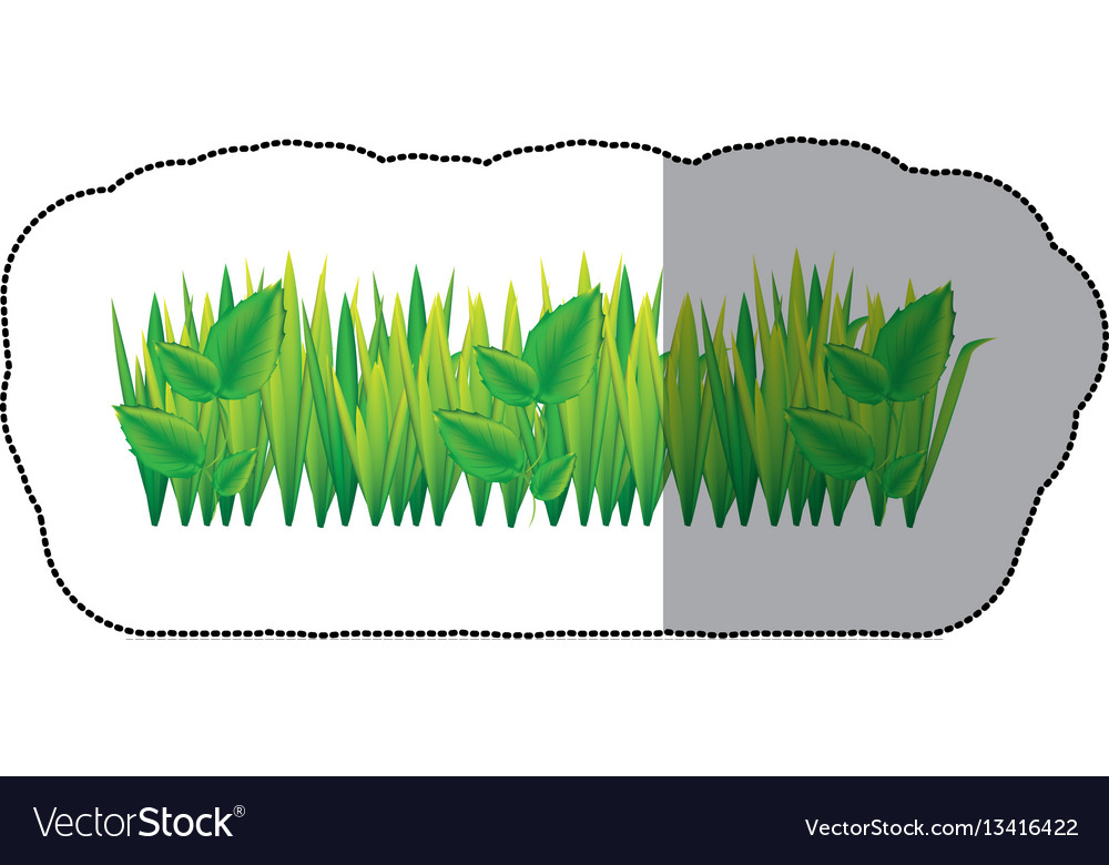 Color grass with leaves icon vector image