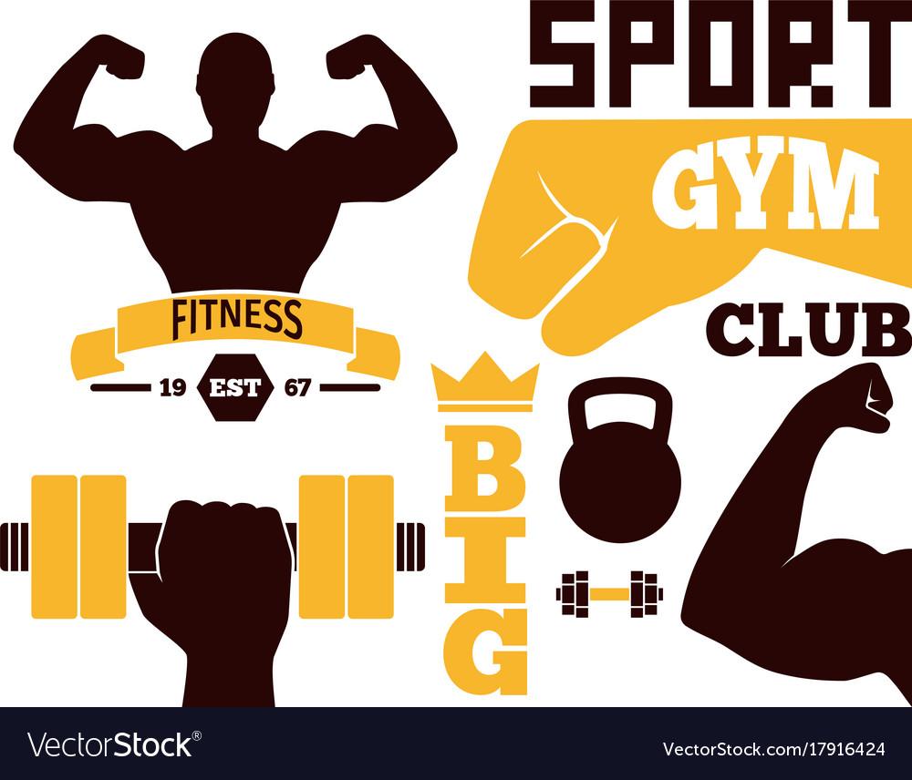 Fitness emblem design element gym sport club Vector Image for Physical Fitness Design  177nar