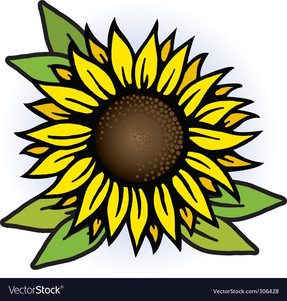 Sunflower Royalty Free Vector Image - VectorStock