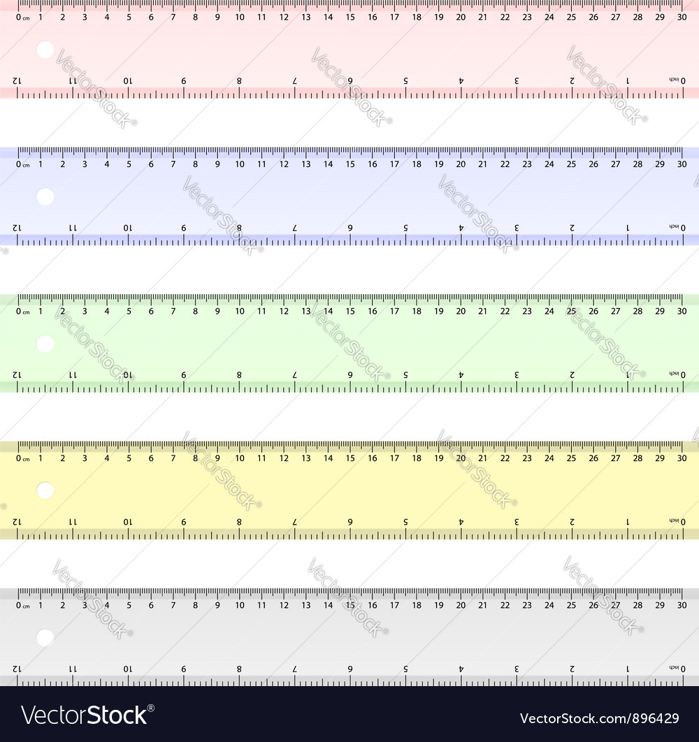Centimeter and inch ruler vector image