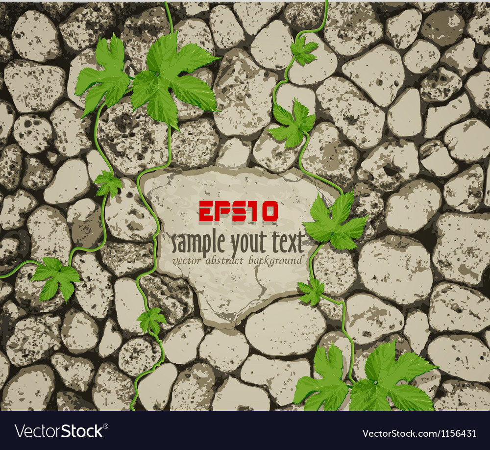 Background with stone vector image