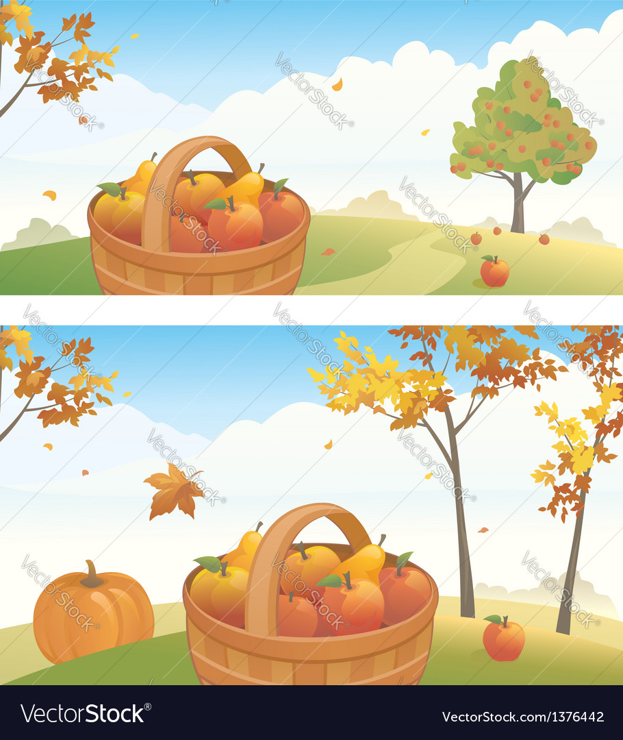 Apple harvest backgrounds vector image