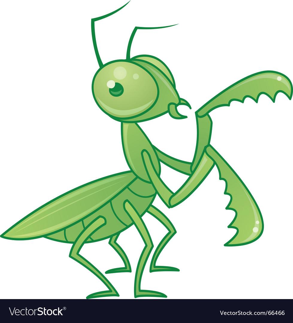 Praying mantis vector image