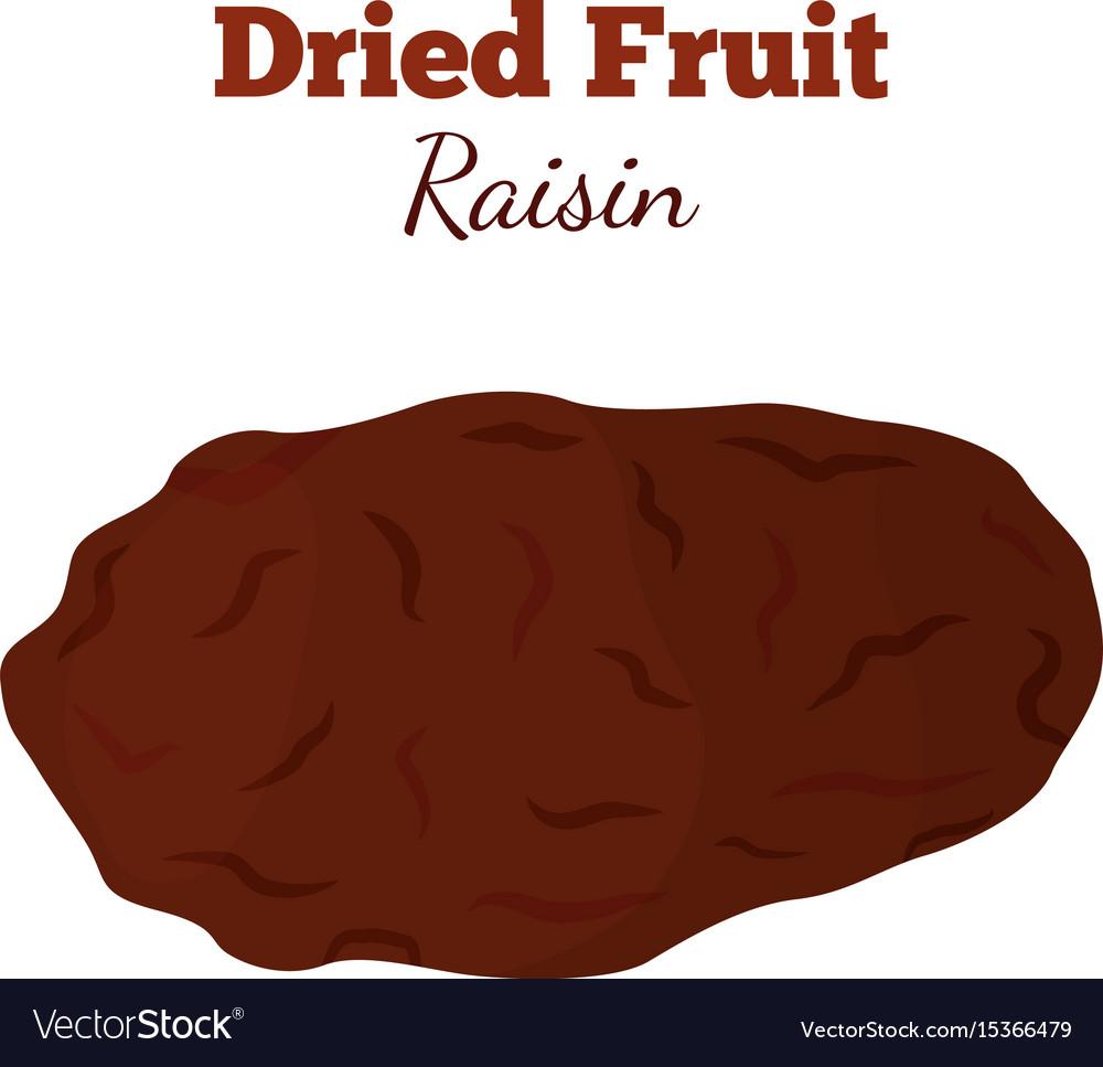 Dried fruit - raisin made in cartoon flat style vector image
