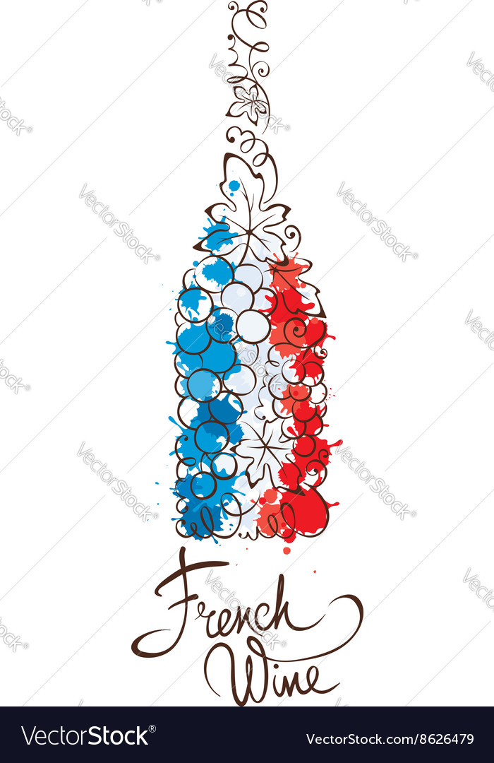 Wine from France vector image