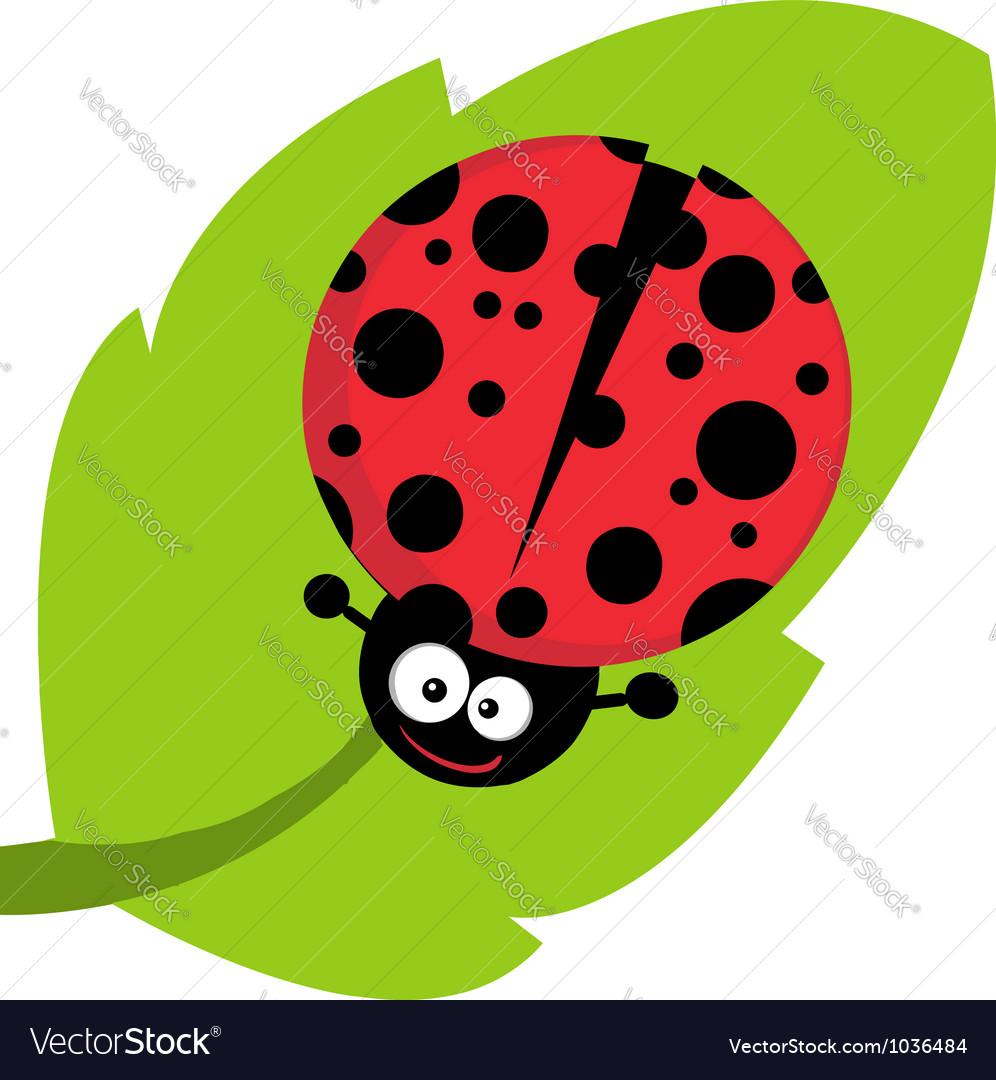 Happy Cartoon Ladybug On A Leaf vector image