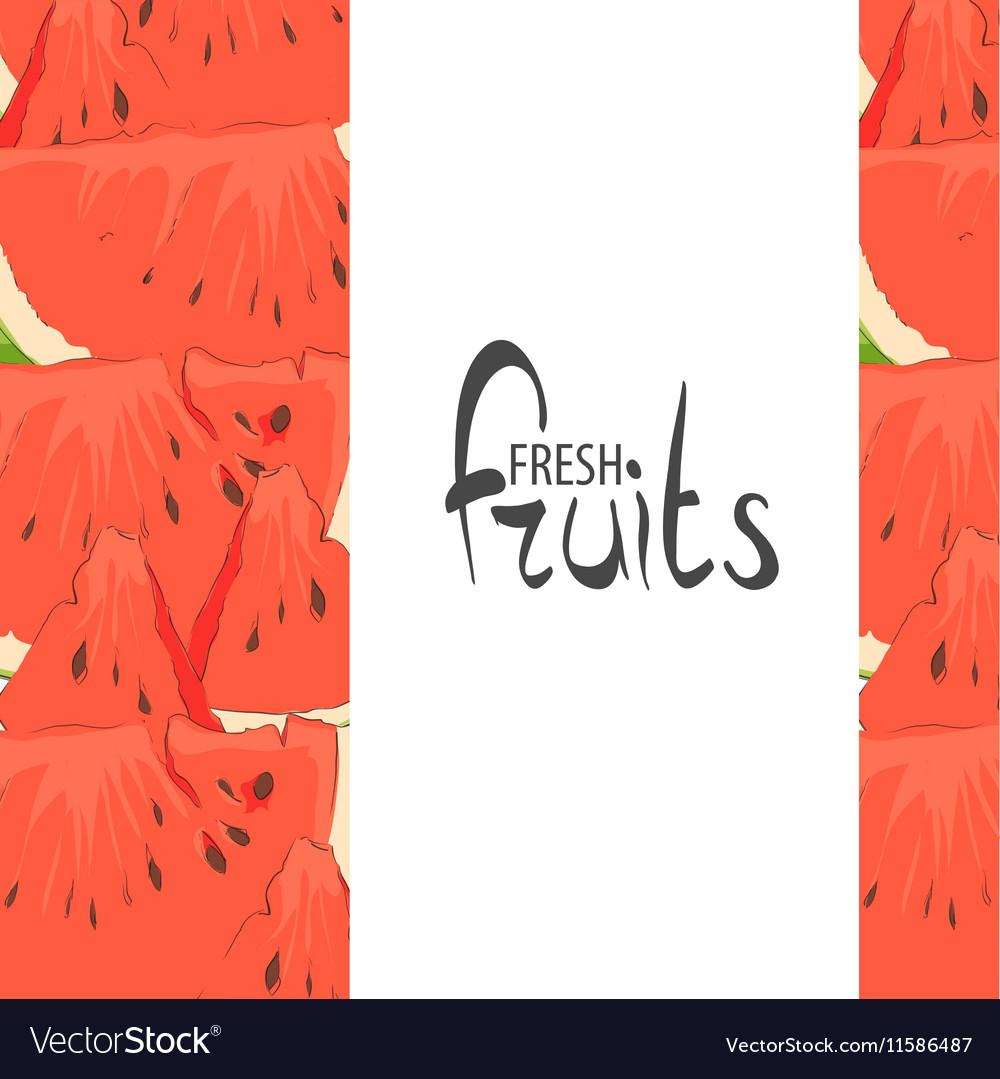 Ripe watermelon vector image