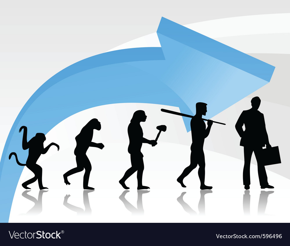 Evolution monkey vector image