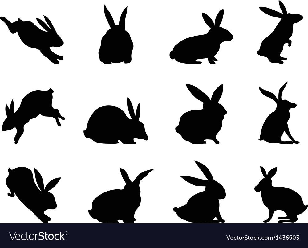 Rabbit silhouettes vector image