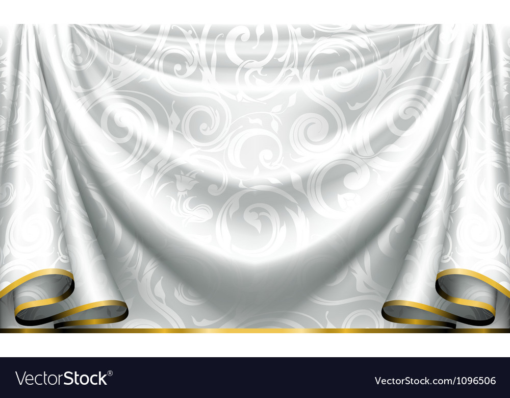 Curtain pattern vector image