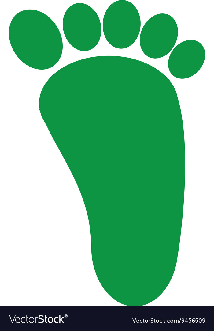 Foot print green isolated icon design vector image