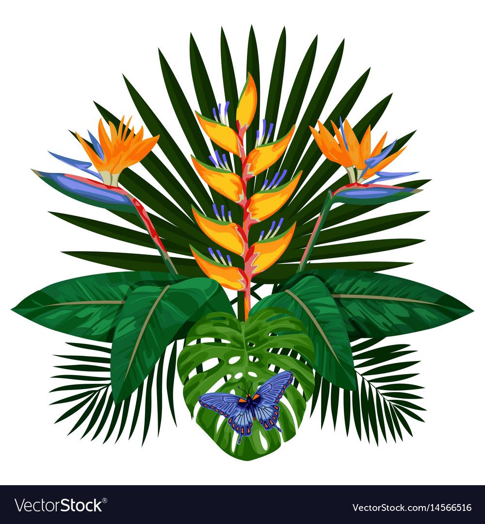 Tropical bouquet composition vector image