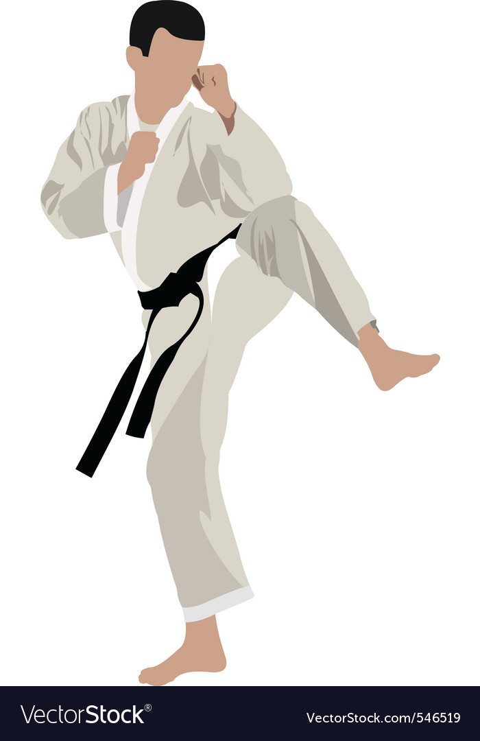 Karate kid vector image