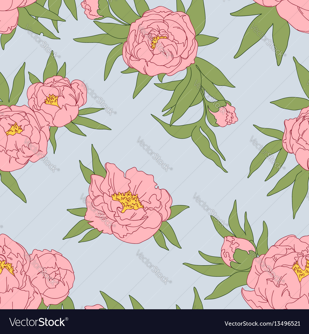 Peony flowers and leaves vector image