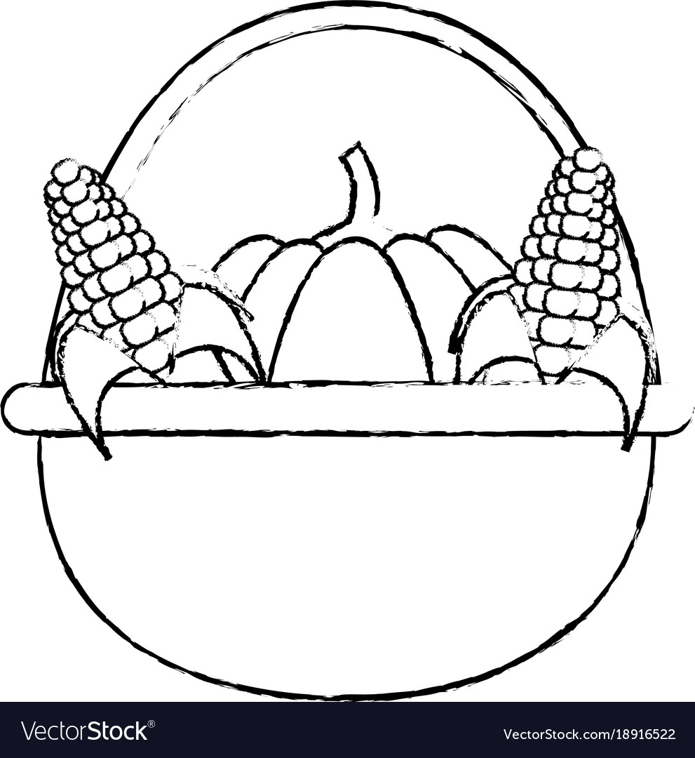 Pumpkins and corns design vector image