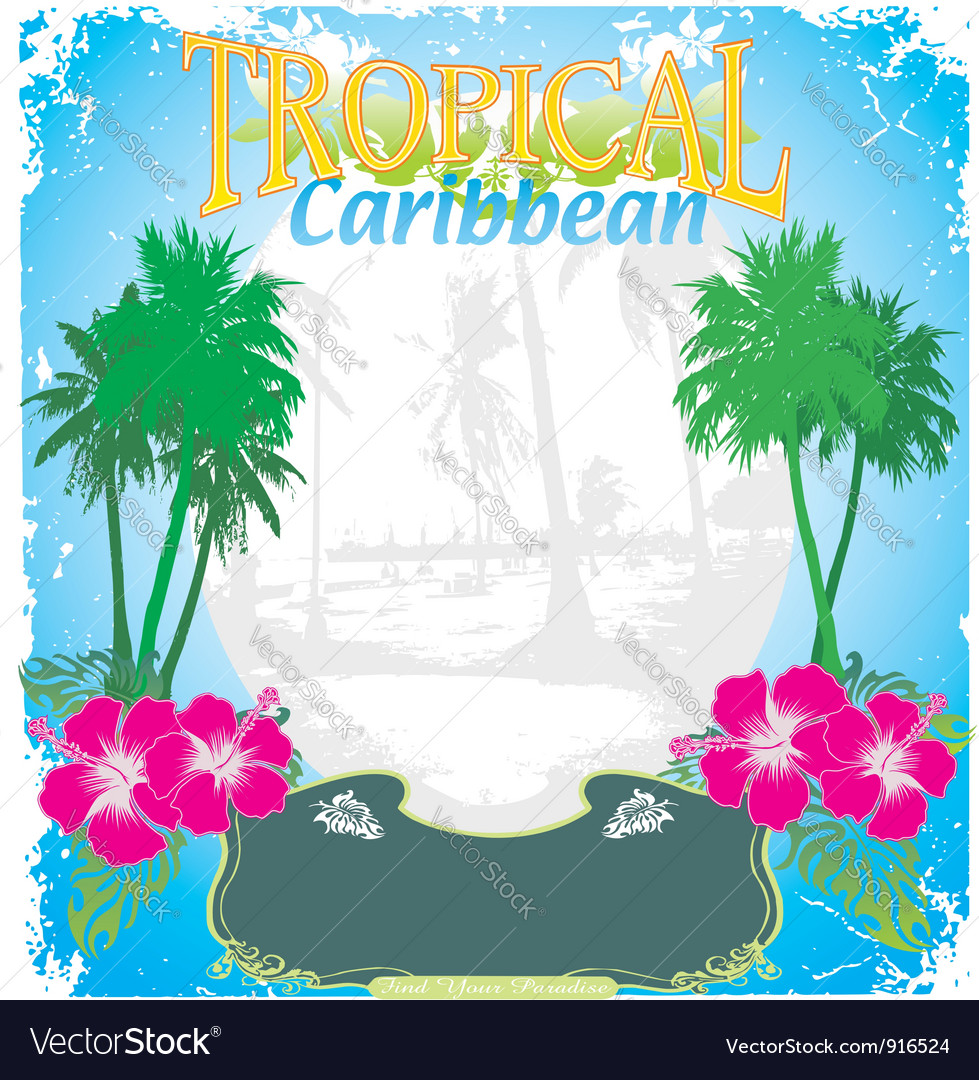 Carribean tropical island vector image