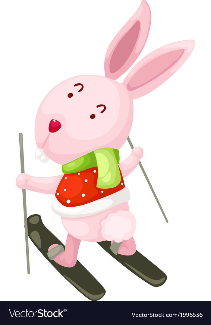 Rabbit ski vector image