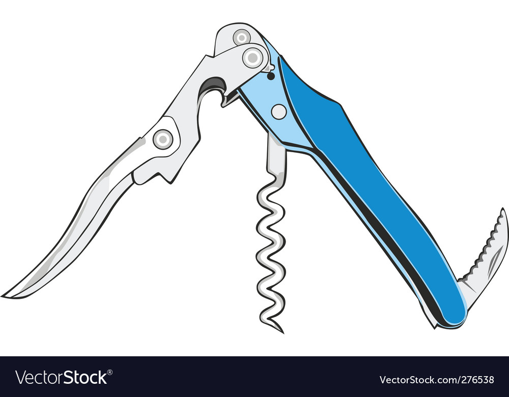 Cork screw vector image
