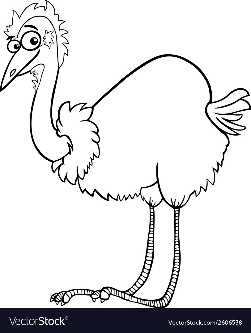 emu ostrich cartoon coloring page royalty free vector image