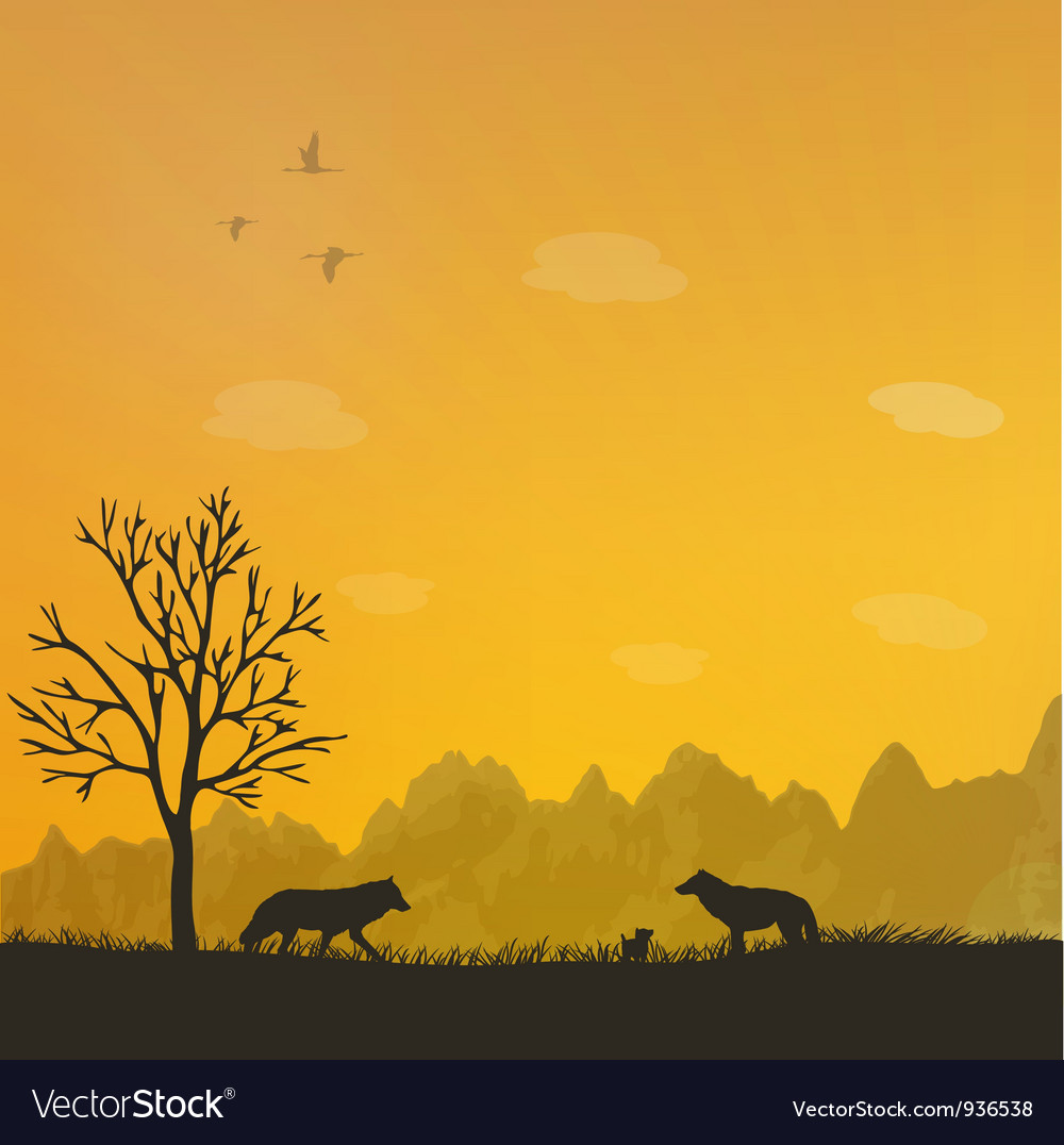 Wolf family vector image