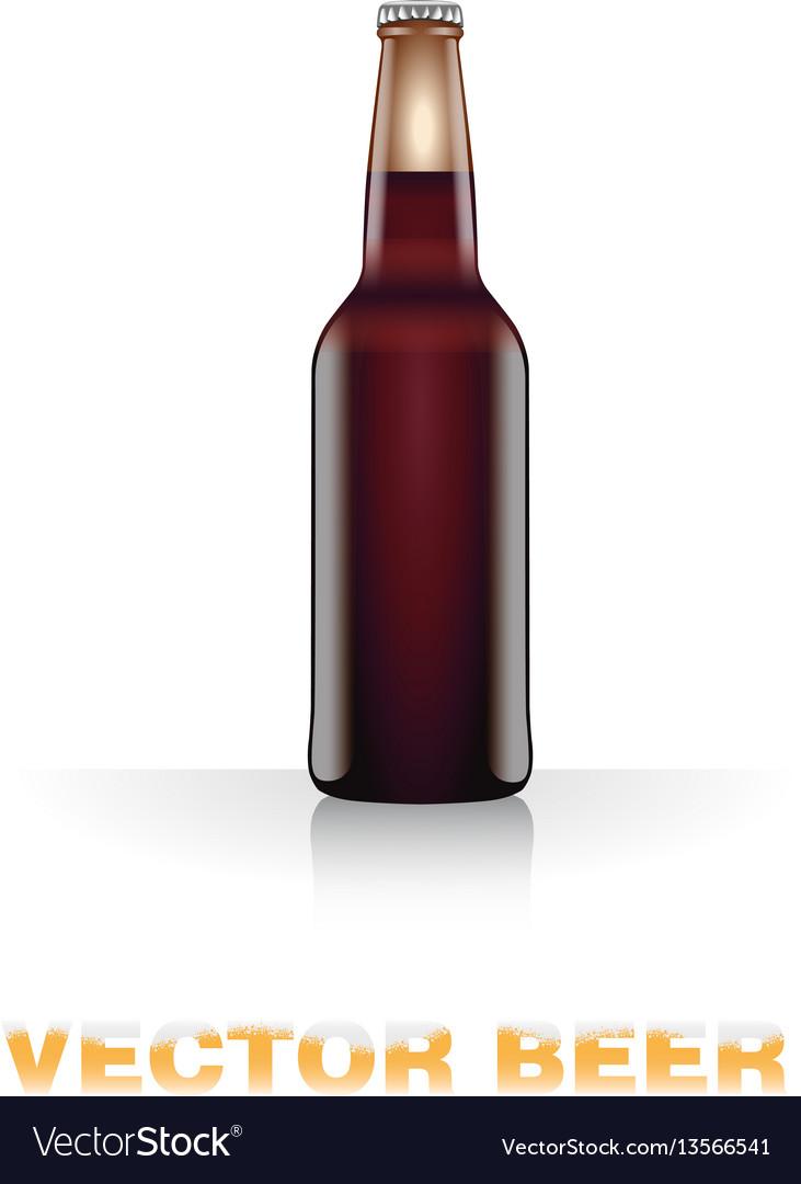 Dark beer bottle vector image