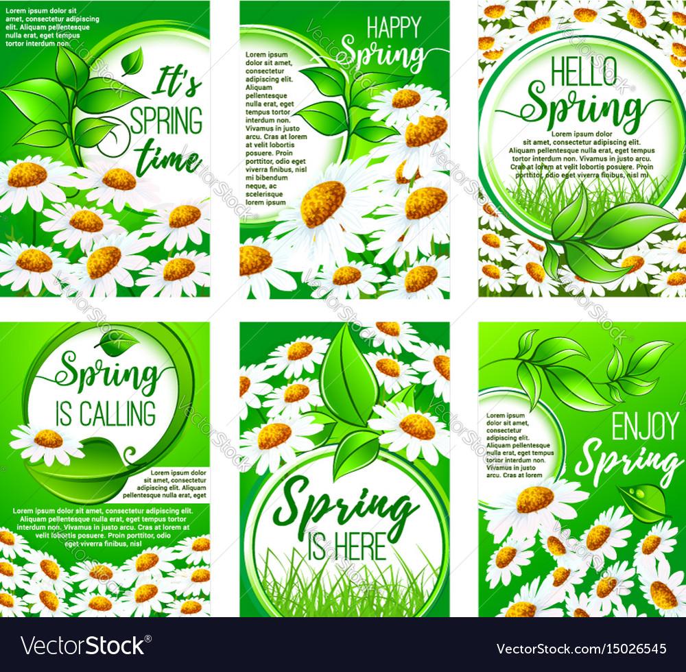 Spring flower greeting card set for holiday design vector image