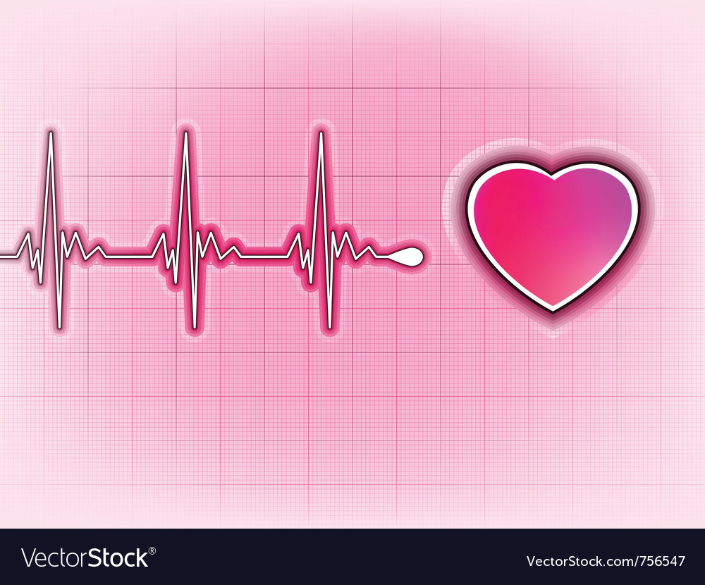 Heart cardiogram background vector image