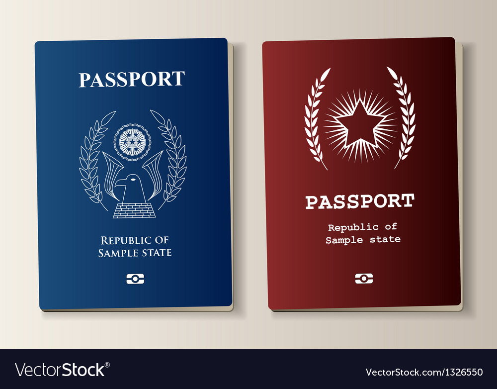 Passport set vector image