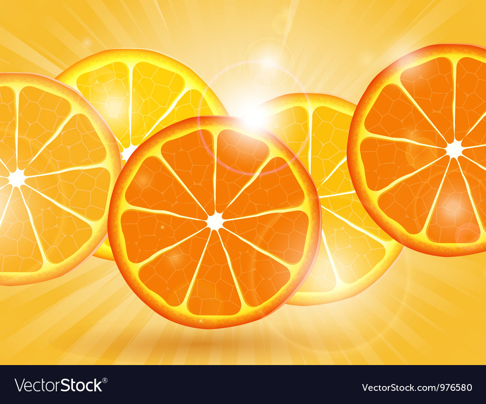 Orange slice background vector image