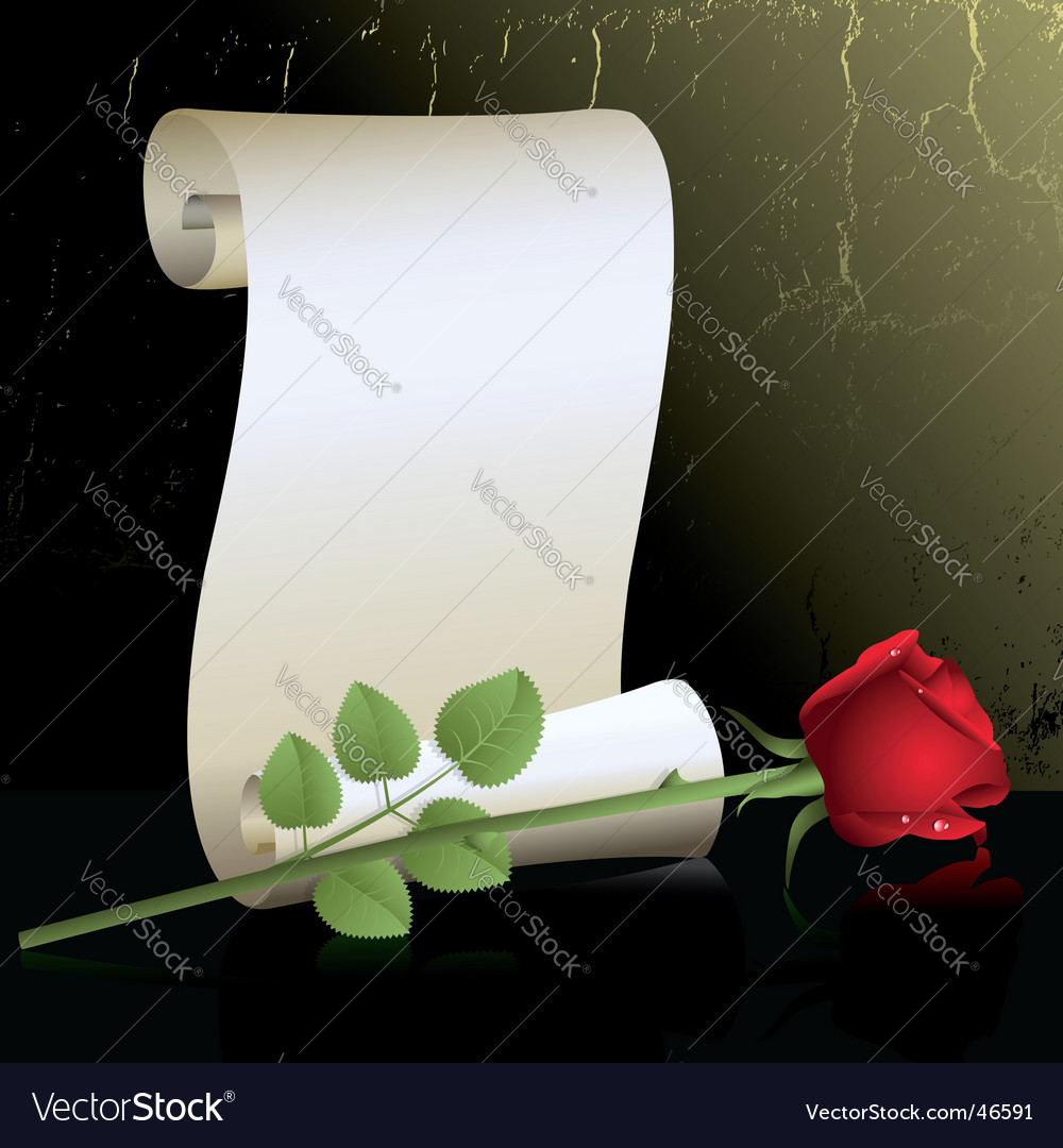 Rose with roll vector image