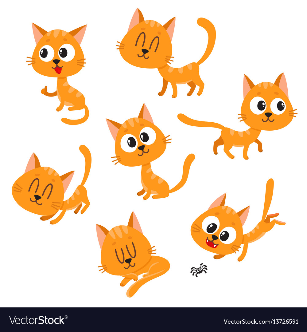 Cute and funny red cat character showing different vector image