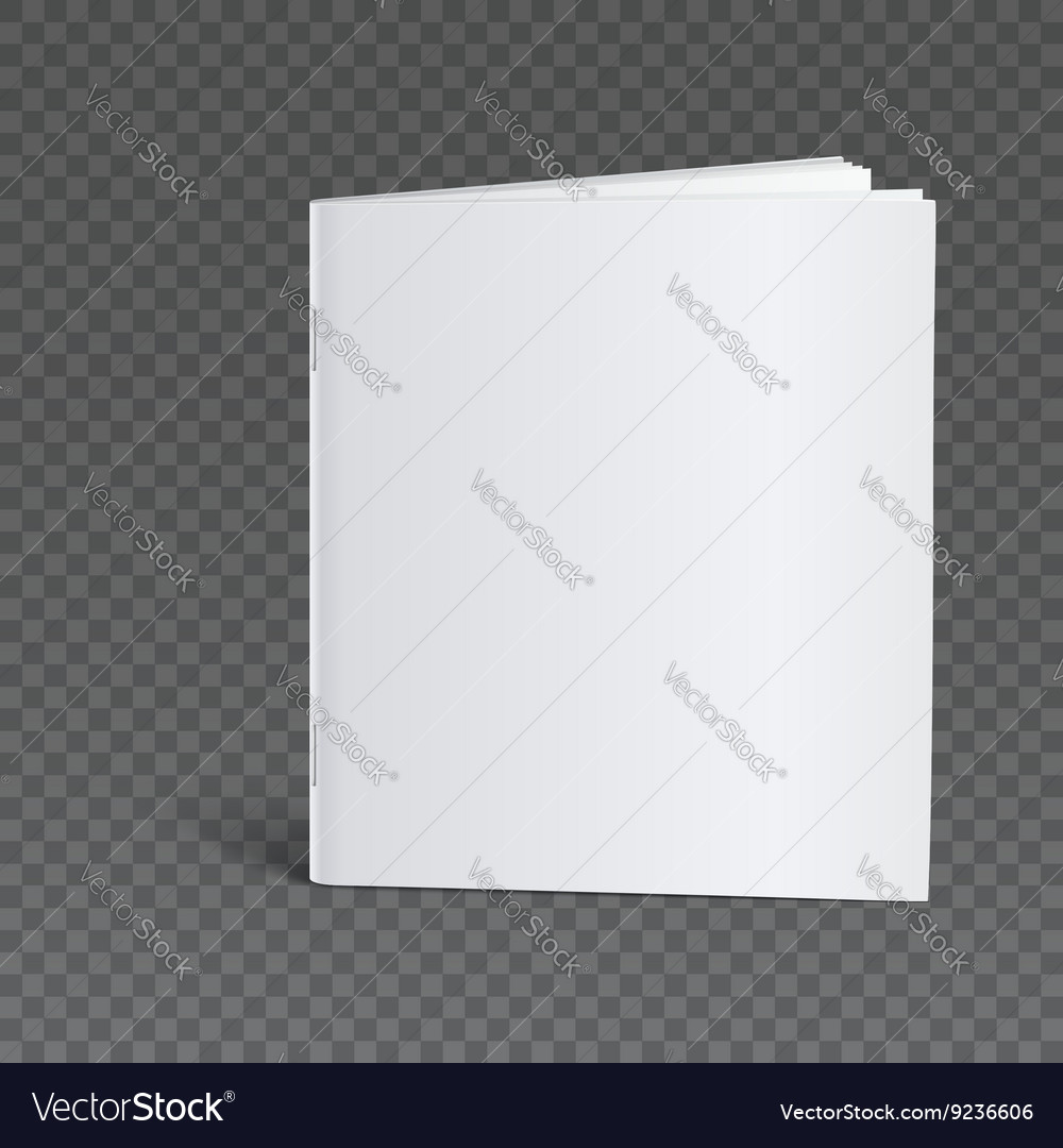 Blank Brochure Template Mock Up Vector Image