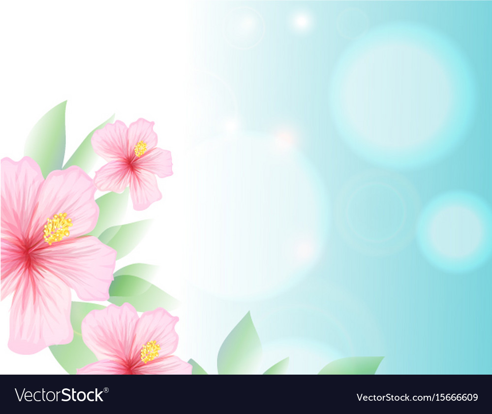 Spring and summer light blue sky and hibiscus vector image
