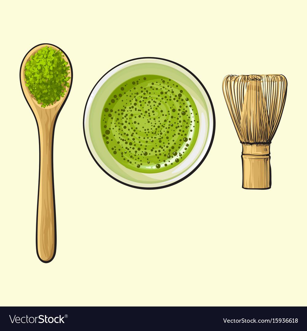 Green tea cup spoon of matcha powder and bamboo vector image