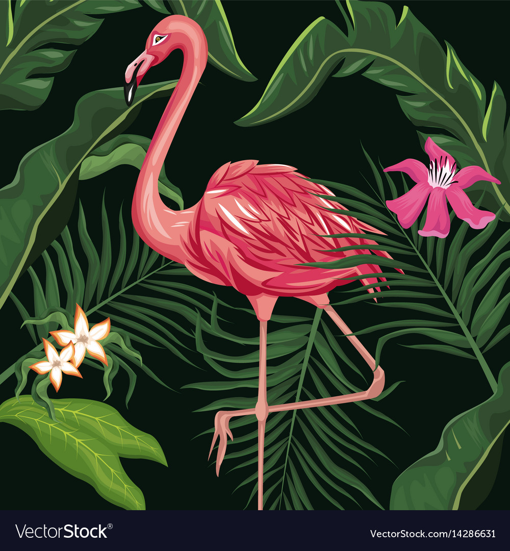 Flamingo exotic tropical bird flower and leaves vector image